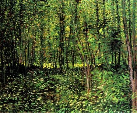 Van Gogh (visipix.com)